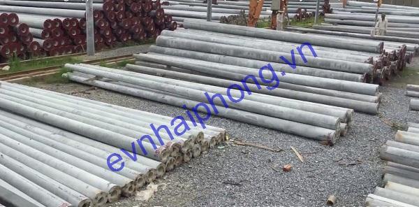 cot-betong-daily-4